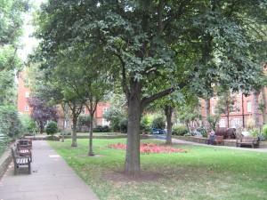 Millbank_Gardens_0193_1024