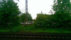 Wunstorf_4667_1024