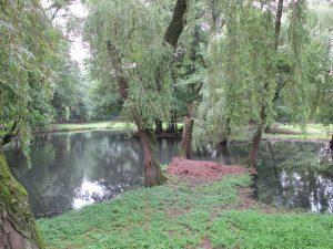 Donaudelta_5284_1024